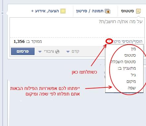 בחירת סוג פילוח קהל יעד בפייסבוק