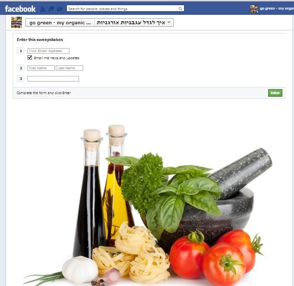 טופס הרשמה לפייסבוק