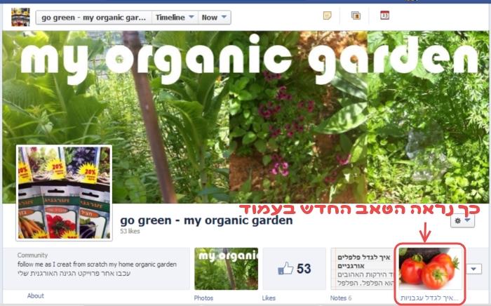 כך נראה הטאב החדש בפייסבוק