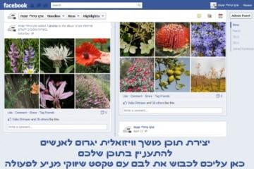"""שיווק בפייסבוק – כיצד לשמר את """"לב העסק"""" פועם בפלטפורמט הטיימליין, ולחרוט את המסר השיווקי בזיכרון הלקוחות?"""