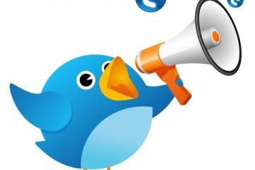 שיווק במדיה חברתית – מדריך טוויטר –  ציוצים חברתיים ברשת